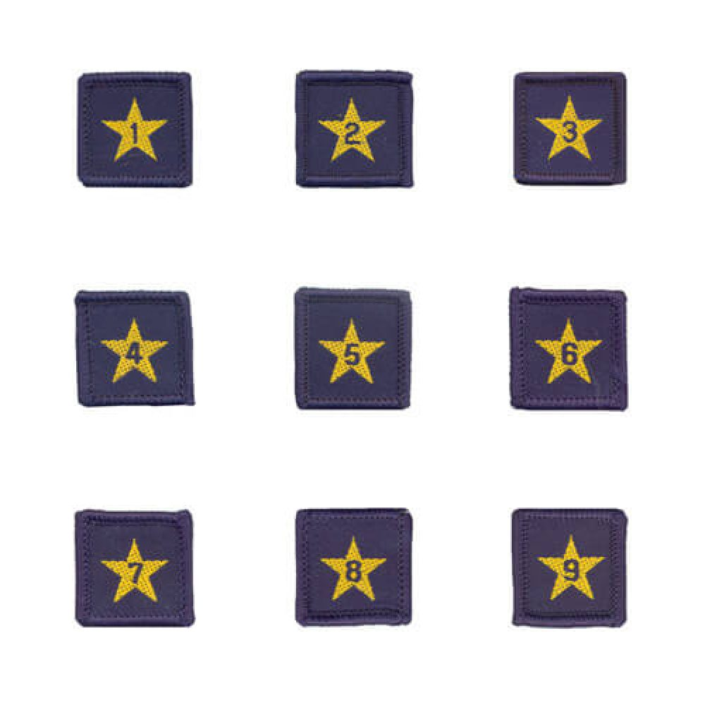 Year Star Badges